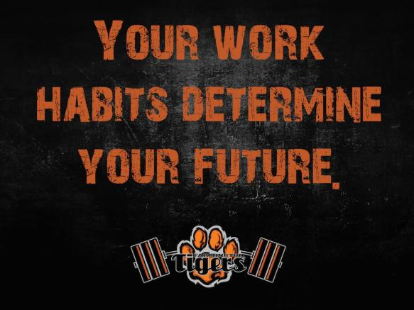 YourWorkHabitsDetermineYourFuture